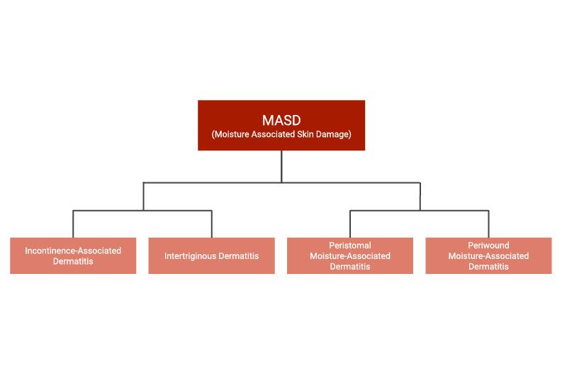 Types of MASD (Moisture-Associated Skin Damage)