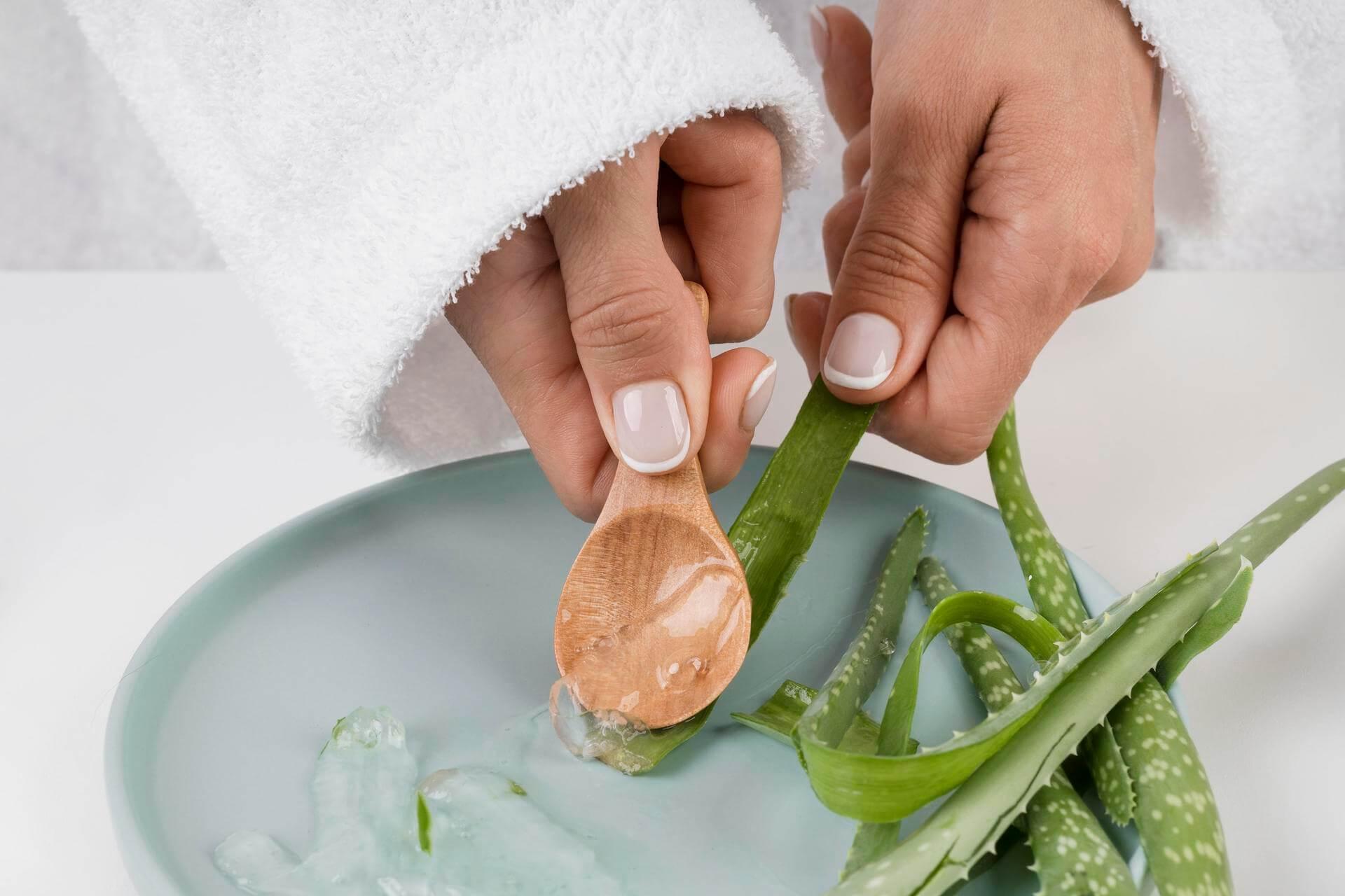 Az aloe vera segíti a felfekvés gyógyulását is