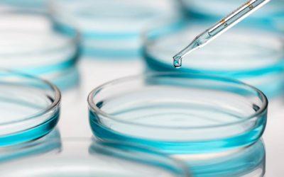 Panthenol,  avagy B5-provitamin: a bőr sokoldalú barátja